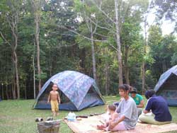Camping in Khao Yai National Park